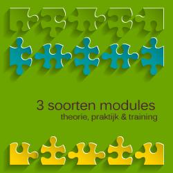 klassieke-talen-modules