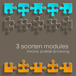 modules-hoogbegaafd