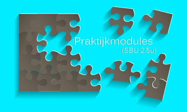 praktijk-modules-hoogbegaafdheid-GR