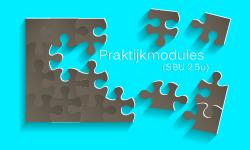 praktijk-modules-hoogbegaafdheid-KL
