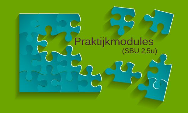praktijk-modules-klassieke-talen-GR