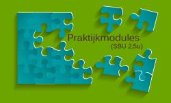 praktijk-modules-klassieke-talen-KL