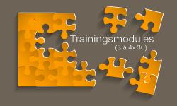 Training-modules-Hoogbegaafdheid-KL